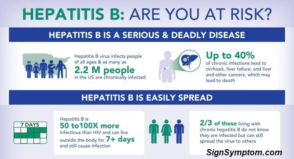 Read more about the article What is hepatitis B? (Herp b)